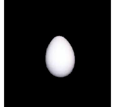 Huevo en poliestireno